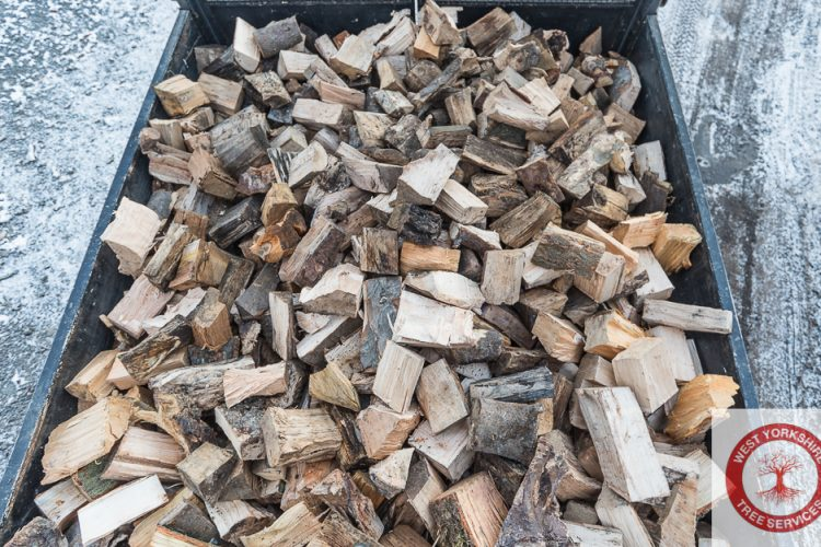 Seasoned Softwood & Hardwood Logs